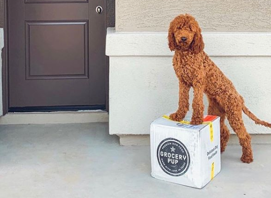 Grocery Pup Delivers Sous-Vide Dog Meals