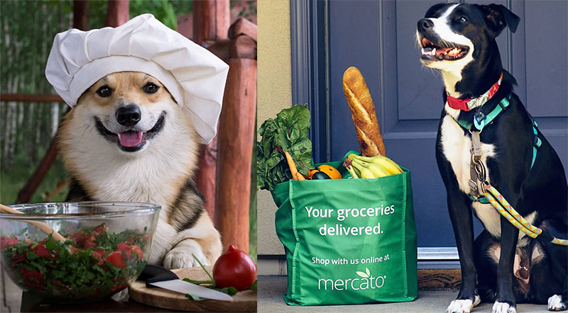 Mercato Packs Up Ecommerce for Independent Grocery Stores